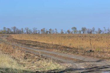 Как заработать на земле сельхозназначения?